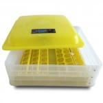 Бытовой инкубатор для 48 яиц с контролем температуры, влажности и автопереворотом HHD 48